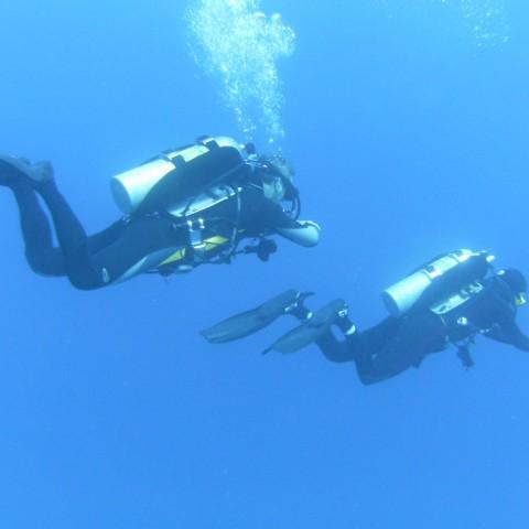 DIR/hogarthian divers - Ras Mohammed