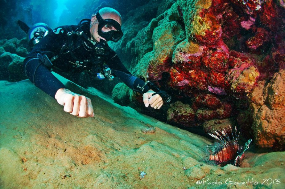 Flavio Side Mount- Leon Fish