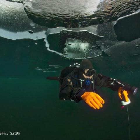 Alex - sagolatura sotto i ghiacci